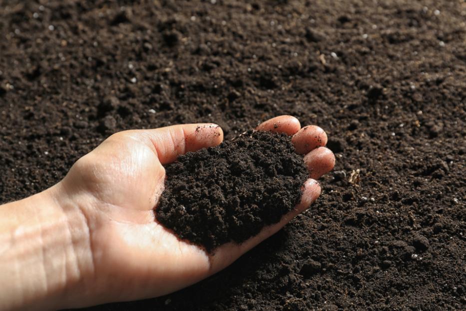 xử lý nền đất yếu bằng đệm cát